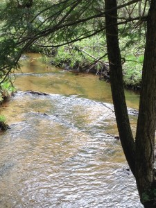 Photo 12 - Slagle Creek