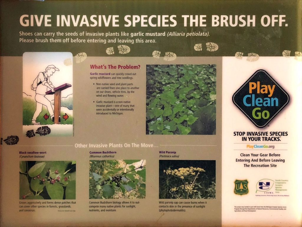 give invasive species the brush off
